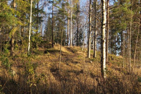 /naturstigen-uvberget-5.jpg