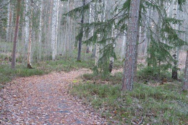 /naturstigen-uvberget-16.jpg