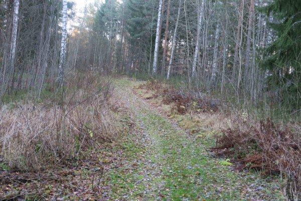 /naturstigen-uvberget-17.jpg