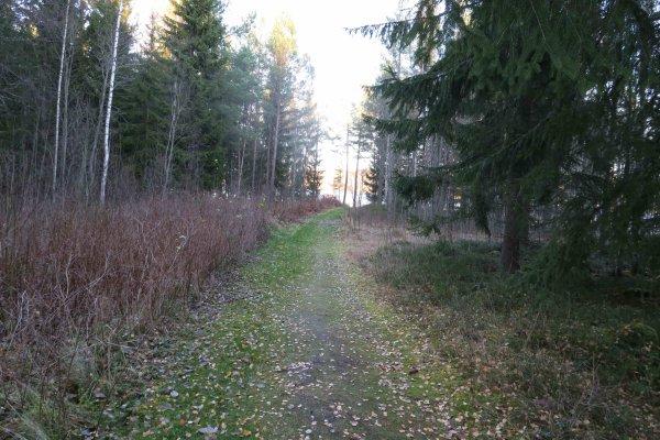 /naturstigen-uvberget-14.jpg