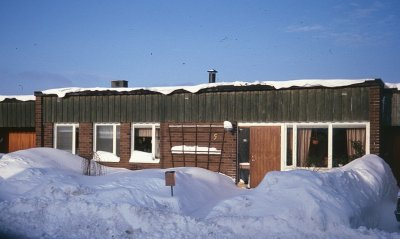 /vinter-tallort-4.jpg