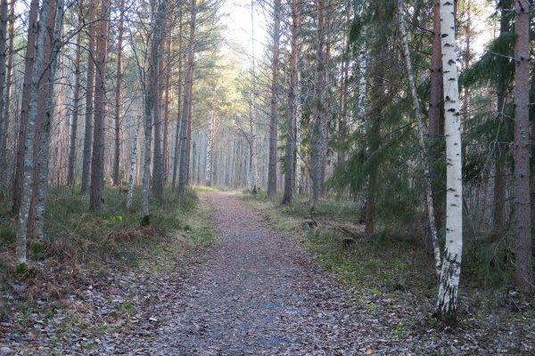 /naturstigen-uvberget-40.jpg
