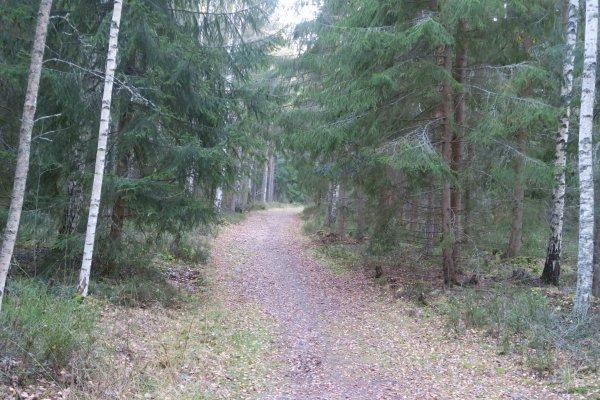 /naturstigen-uvberget-38.jpg