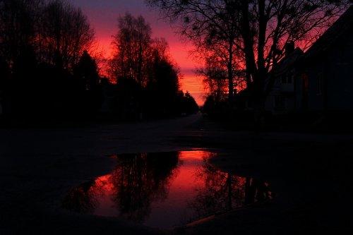 Soluppgång på min gata