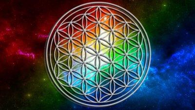/flower-of-world-peace-1.jpg