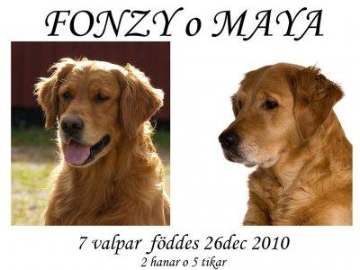 fonzy-o-mayakull1huvudbilder.jpg
