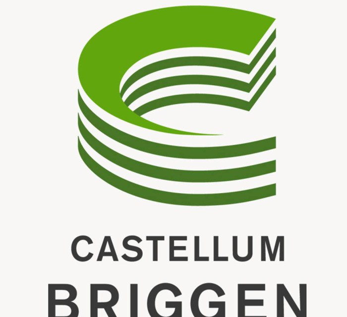 logga Briggen