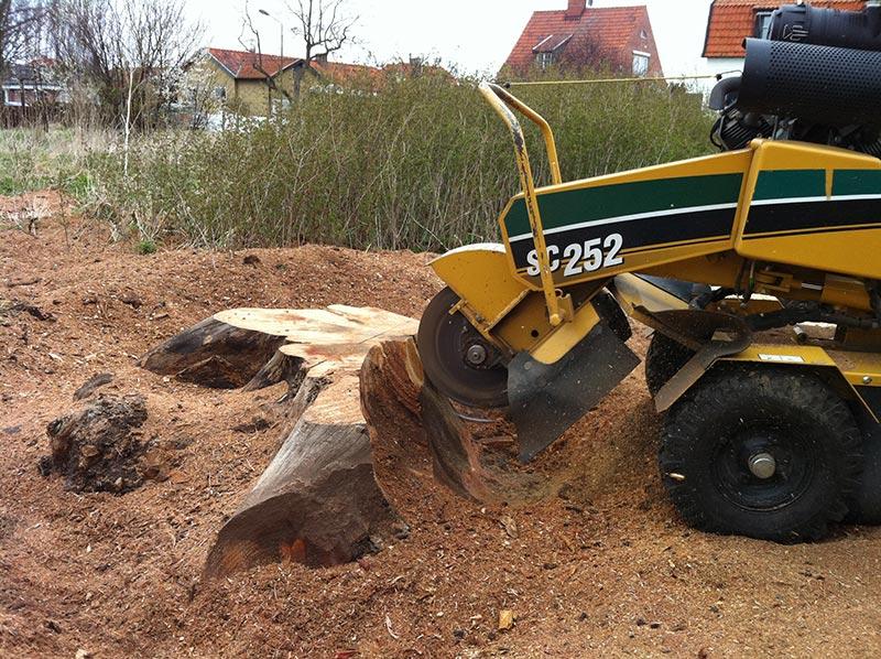 Arbetar på stubbfräs