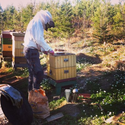 /biodlarn-i-arbete-maj-2013.jpg