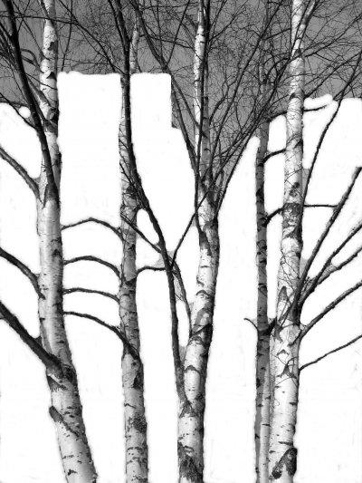 img-5898-svartvitt-copy-3.jpg