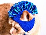 sticka-kul-katt-hatt-mohawk-tuppkam-knäpp-roligt-stickning-rolig-annorlunda-udda-kreativt