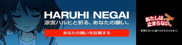 涼宮ハルヒと祈る、あなたの願い HARUHI NEGAI