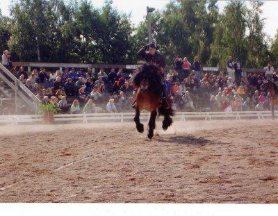 trakt-rattvik-gallop.jpg