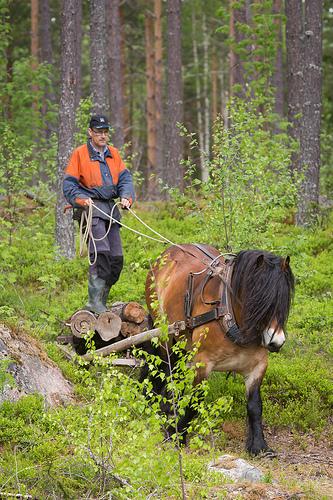 /gral-lars-skogen-var-reportage.jpg