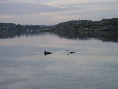 /vintern-2005-014.jpg