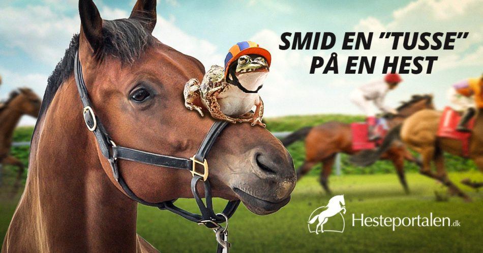Dansk Hestevæddeløb