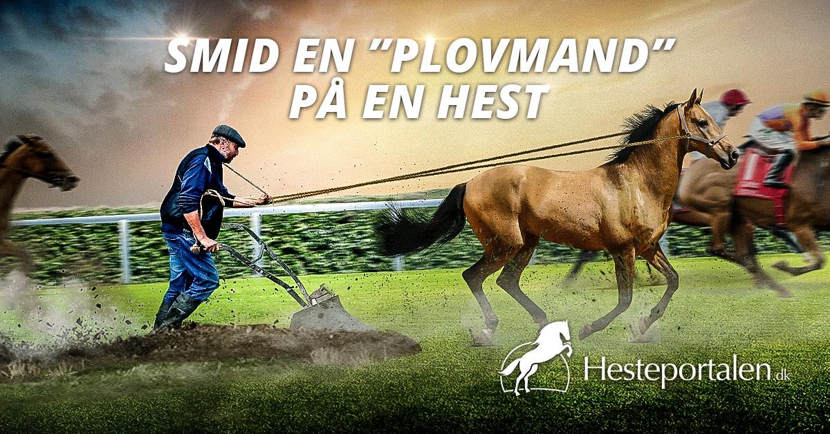 Hestebookmaker