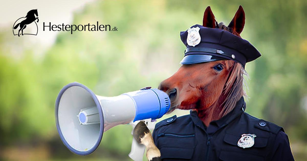 hestepoliti