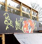 Skater ramp