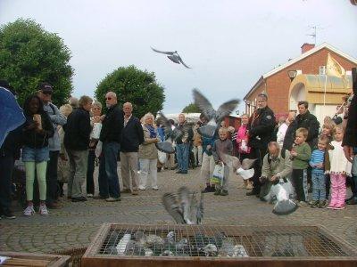 Duvsläpp Hova höstmarknad 2012