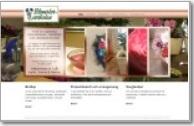 our website design