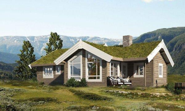 Norska husbyggare