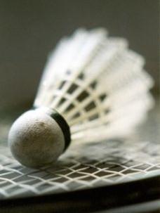badmintonboll.jpg