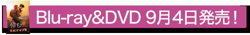 『悼む人』DVD&Blu-ray9月4日発売決定!