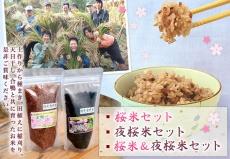 桜米&夜桜米セット