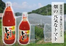 畑の元気なトマト