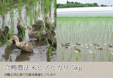 合鴨農法米ヒノヒカリ 5kg