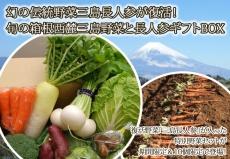 幻の伝統野菜三島長人参が復活!旬の箱根西麓三島野菜と長人参ギフトBOX