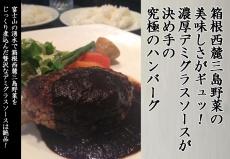 箱根西麓三島野菜の美味しさがギュッ!濃厚デミグラスソースが決め手の究極のハンバーグ