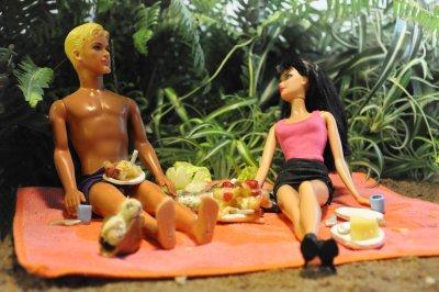 /picknicken-042klar.jpg