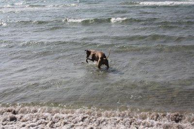 stranden-m-alla-024.jpg