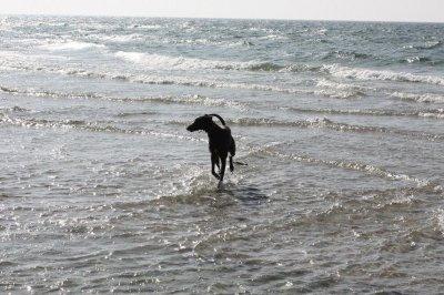stranden-m-alla-001.jpg
