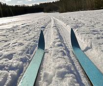 高知スキー連盟ホームページ