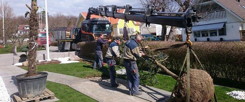 Vi kan hjälpa er med trädgårdsprojekt tack vare vår kranbil i Göteborg.