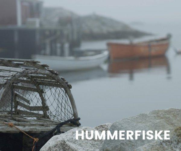 Hummerfiske premiär