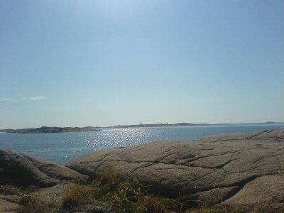 /vykungshamn.jpg