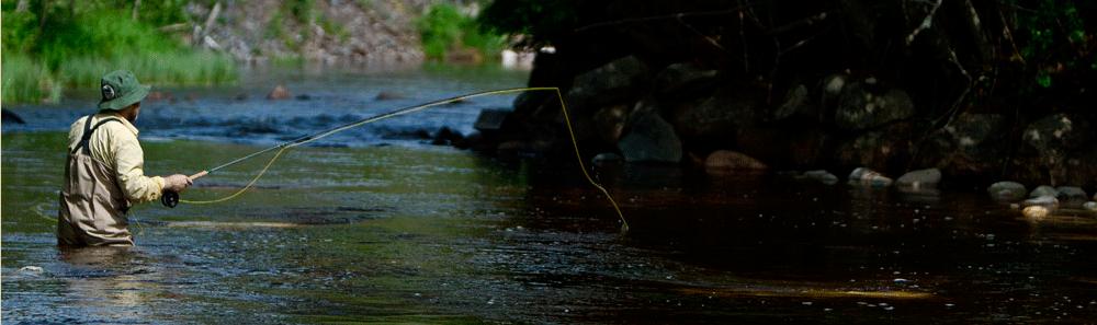 Eduardo-fiskar-gadda.png
