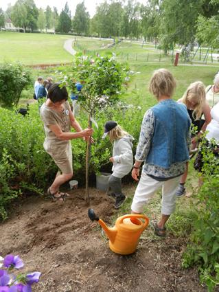 /vi-planterar-ett-trad.jpg