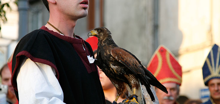 falconieri.jpg