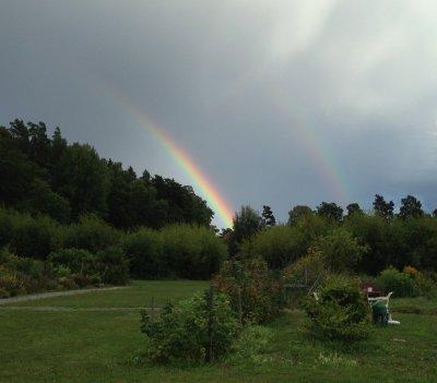 regnbage.jpg
