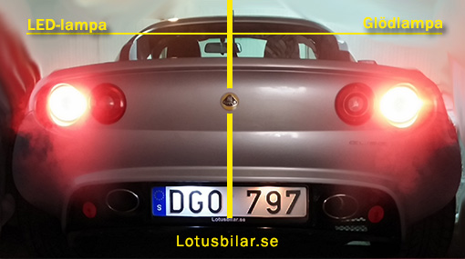 /lotus-led-lamp-license-plate.jpg