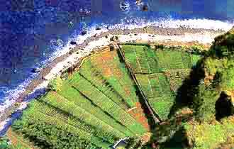 Private Ferienwohnungen und Wandern auf Madeira