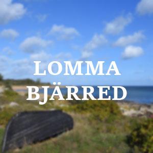 Vår städfirma i Lomma / Bjärred