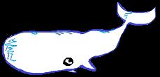 /whalebalck2.png