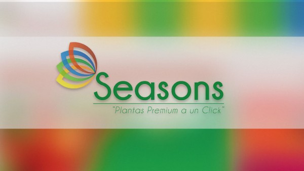 Marketing Digital Seasons