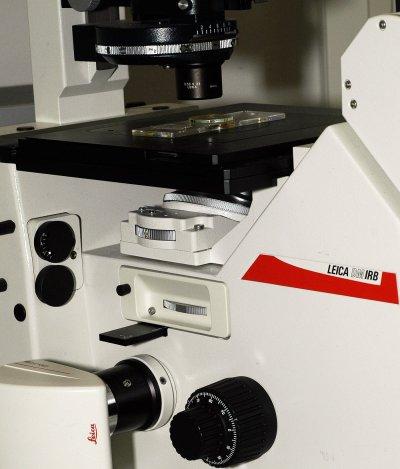 planktonmikroskop.jpg